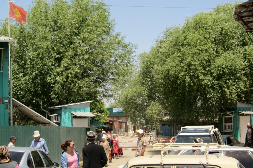 people and cars at a standstill under trees at the the Kyrgyz-Tajik border